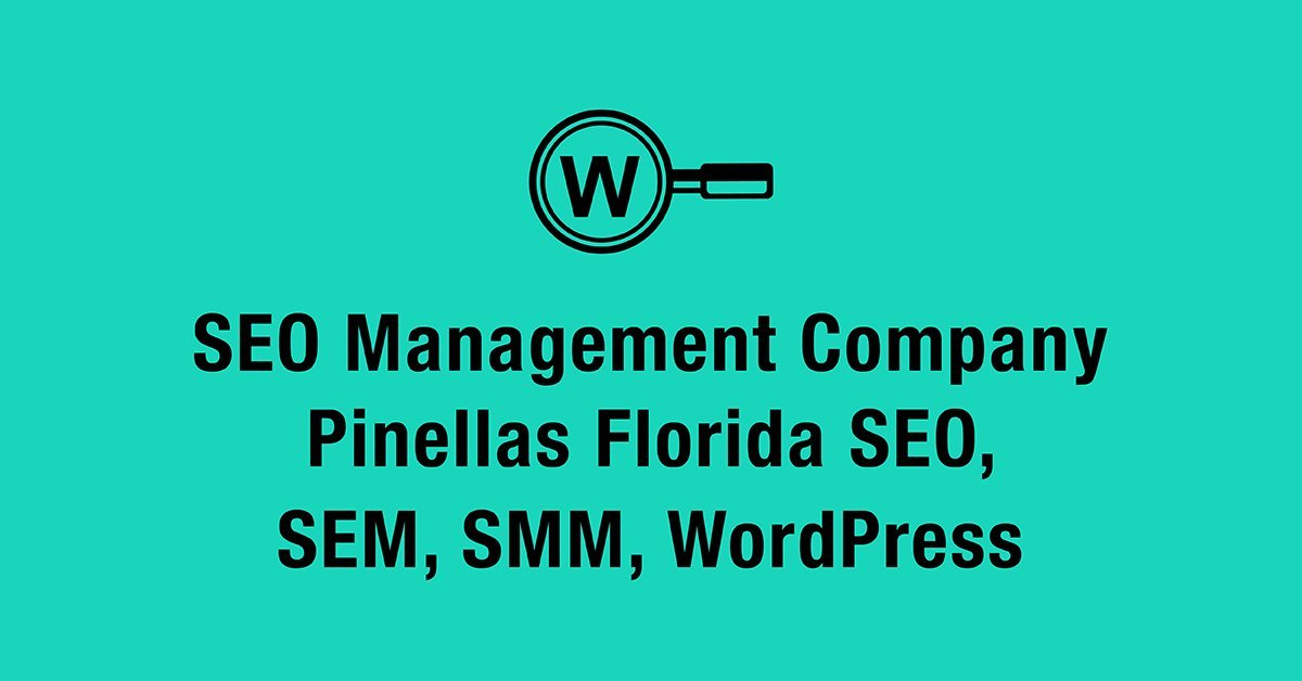 seo management company pinellas