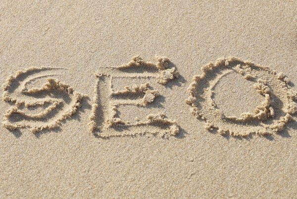 SEO Services in Florida: What Type of Services Can Help Your Business?